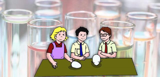 החומרים: ביצים סיר מים קערה    הניסוי: להרתיח את הביצים במים עד שיתקשו. לצנן את הביצים תחת מים זורמים ולהניח במקרר. להניח בקערה את הביצים הקשות עם […]
