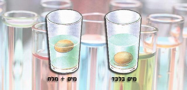 החומרים: 2 כוסות מים 7 כפות מלח 2 ביצים (עדיף טריות) כף (לערבוב)    הניסוי:  למלא את 2 הכוסות במים. להוסיף לאחד הכוסות 7 כפות […]